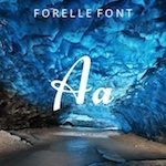 Cursive typography Forelle