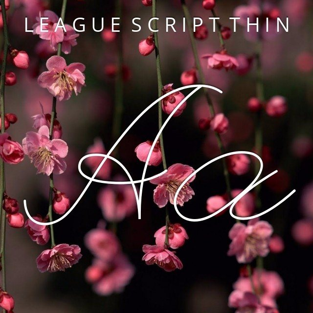 League Script Thin