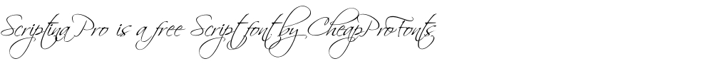 Scriptina Pro is a free script font by CheapProFonts